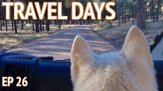 Van Camping with Leo the Siberian Husky | Camper Van Life S1:E26