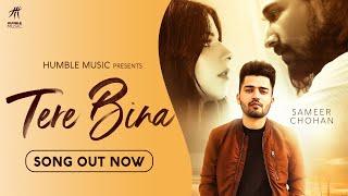 Tere Bina (Sameer Chohan) Mp3 Song Download