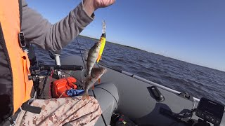 Рыбалка в конце лета на большой воде