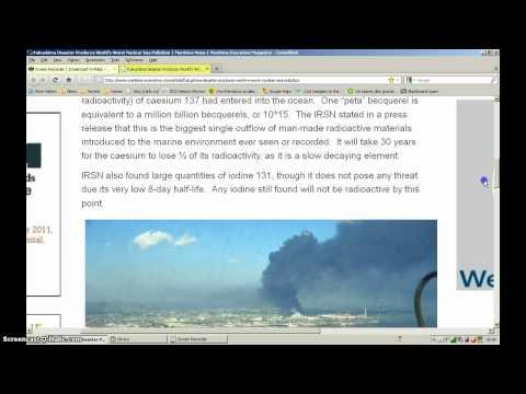 Fukushima Disaster  World's Worst Nuclear Sea Pollution
