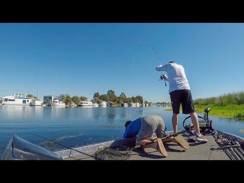 BBT Tournament Of Champions Day 1 (Delta, Ca Bass Fishing)