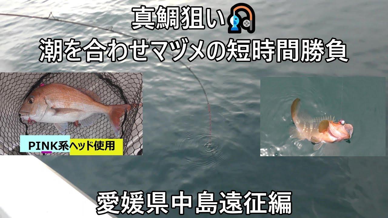 真鯛狙い🎣潮を合わせマヅメ短時間勝負🐟会話が笑える学生さんと中島遠征編