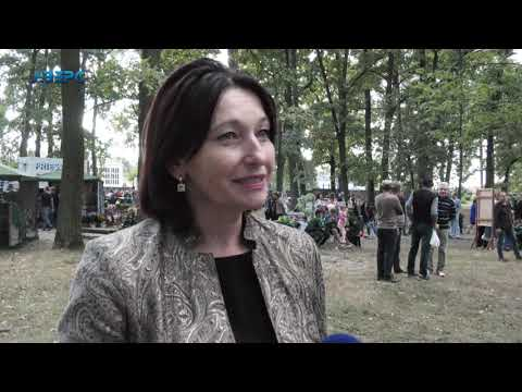 ТРК Аверс: Лісова галузь Ківерцівщини: чим живе, на що сподівається