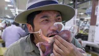 154集 釜山行生吞八爪鱼——韩国 Eating live octopus in Korea