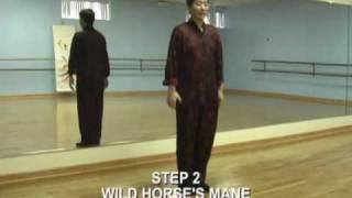 Tai Chi Chuan 24 Steps Beginners Lesson 1