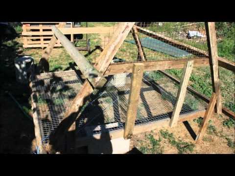 Costruire l 39 abbeveratoio per polli facile e economico doovi for Costruire un pollaio con i pallet