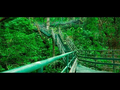 Thenmala Ecotourism : Adventure Zone, Kerala , India