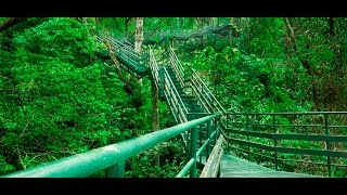 Thenmala Ecotourism : Adventure Zone, Kerala , India