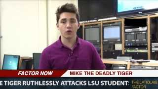 Lsu Student Porn - Mike the Tiger Attacks Students - The Funyon. LSU Tiger TV