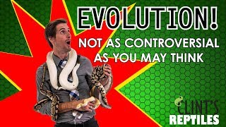 evolution-not-as-controversial-as-you-may-think