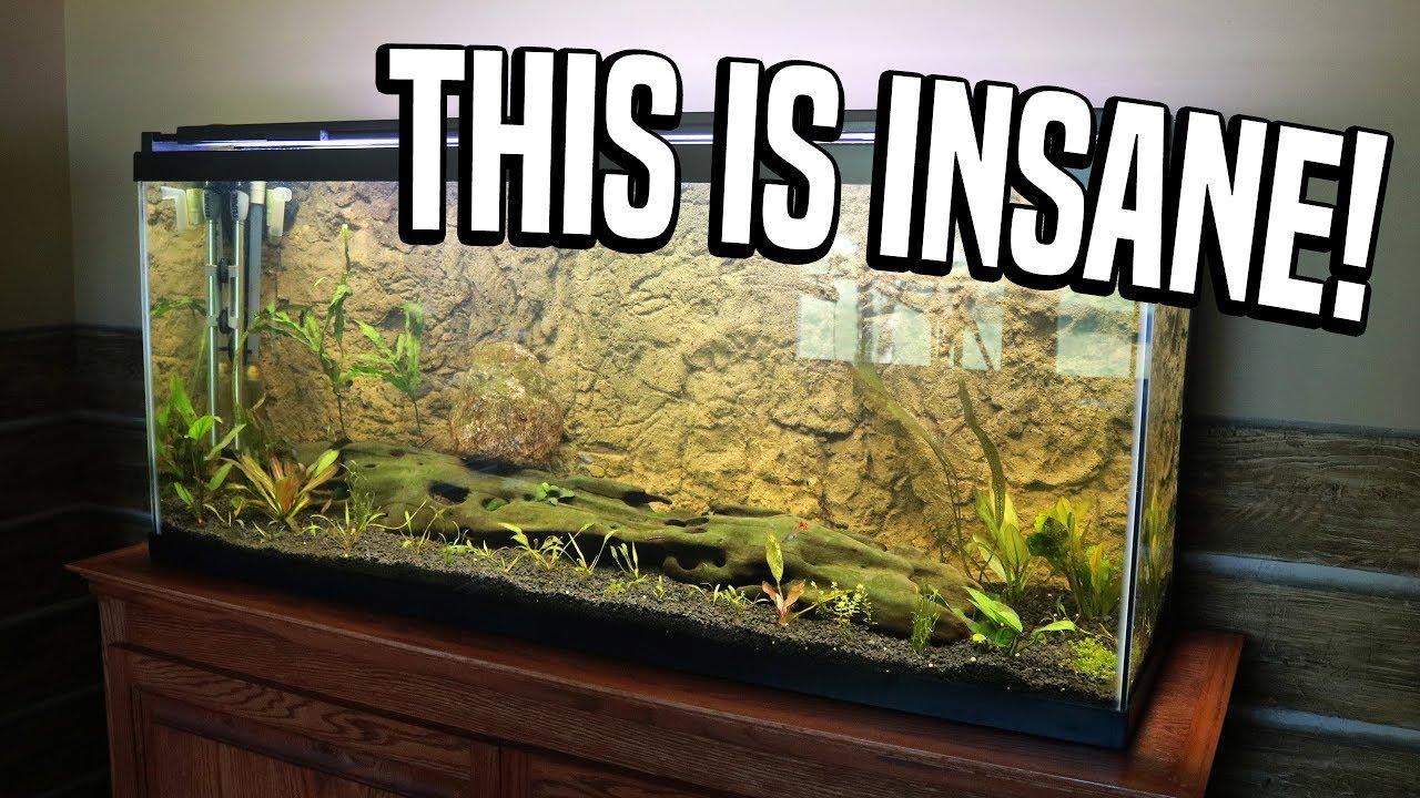 Aquarium 3d Background Youtube