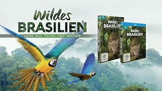 Wildes Brasilien BBC - Trailer [HD] Deutsch / German