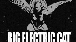 Big Electric Cat - Bed of Nails