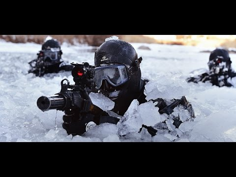U.S Marines and U.S Army having drills in Norway. (Preparing for Russian invasion)