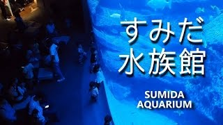 東京スカイツリータウン・ソラマチにある「すみだ水族館」。2016年...