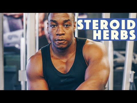 4 HERBS with natural steroid effects for bodybuilding & muscle gain