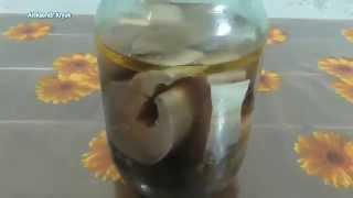 Скумбрия Скумбрия маринованная Маринованная скумбрия малосольная простой рецепт