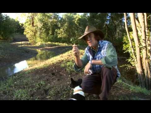 Привет, Билл! / Знакомство с Биллом (2007/HD) - смотреть