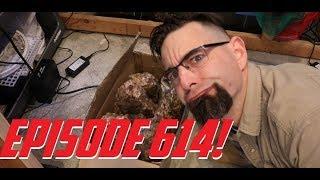 Episode 614! Dragon Stone Aquascaping! thumbnail