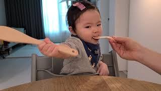 12개월 아기 이유식 먹방 소고기 볶음밥