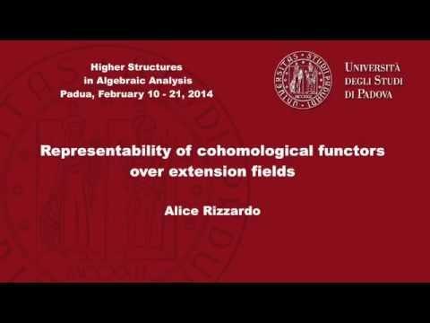 Alice Rizzardo - Representability of cohomological functors over extension fields