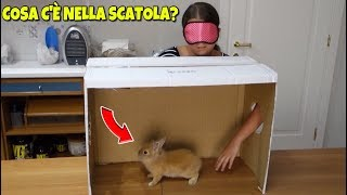 COSA C'È NELLA SCATOLA? - What's In The Box Challenge