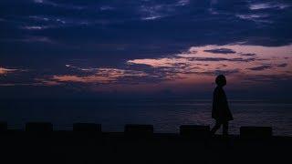 THE PINBALLS「失われた宇宙」(Official Music Video)