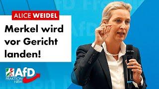 Merkel wird vor Gericht landen! – Alice Weidel (AfD)