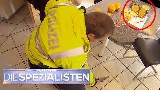 Fieses Früchtchen: Eine Ananas lässt diesen Spieleabend blutig enden |  Die Spezialisten | SAT.1 TV