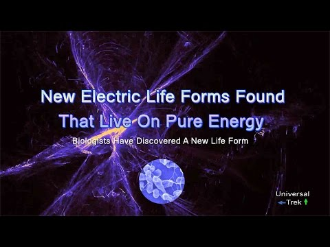 New Electric Life Forms Found That Live On Pure Energy