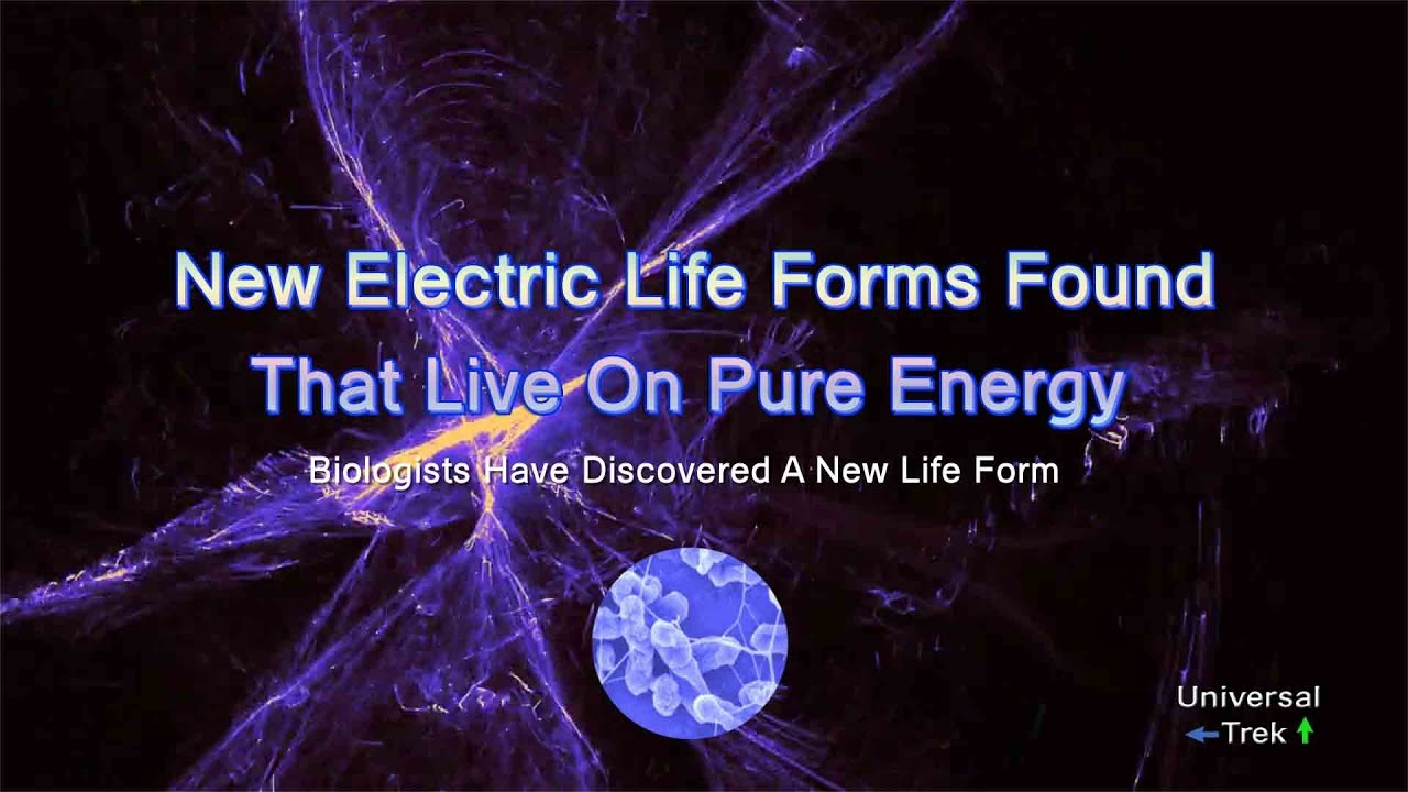 New Electric Life Forms Found That Live On Pure Energy - YouTube