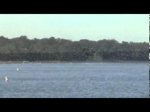 Steelhead Fishing Fairport Harbor