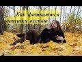 Как фоткаются девушки осенью. ОСЕННЯЯ ФОТОСЕССИЯ. Типичная осенняя съёмка