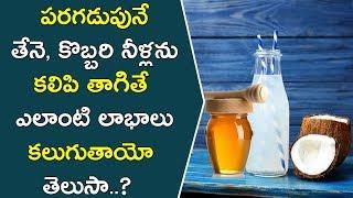 తేనె, కొబ్బరి నీళ్లను కలిపి తాగితే కలిగే లాభాలు..!! || Health Benefits Of Coconut Water And Honey