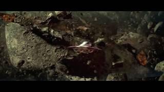 Star Wars: Episode II - Attack of the Clones Fan Trailer