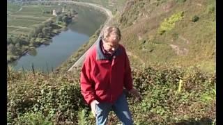 Route des Vins - Allemagne, De la Moselle au Rhin