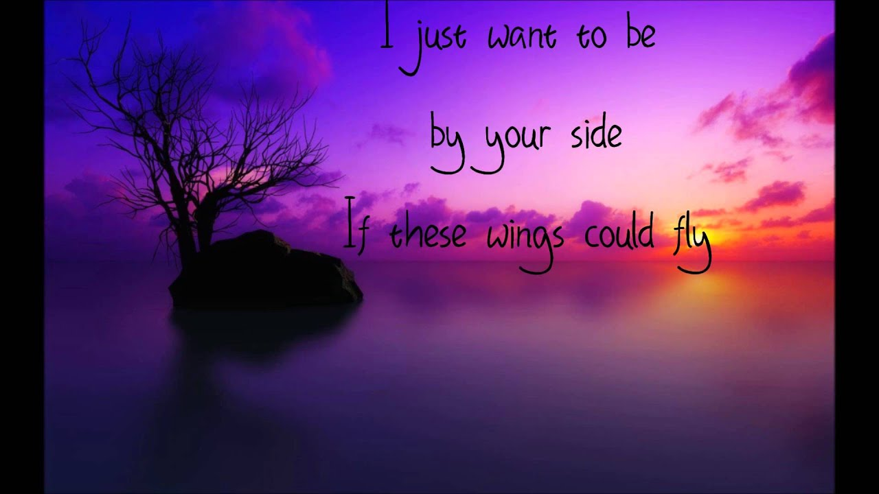 Birdy - Wings Lyrics | SongMeanings