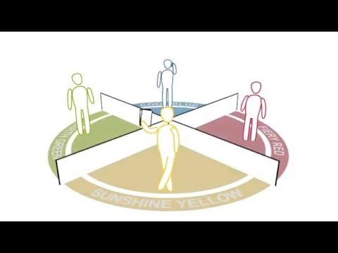 Insights Team Effectiveness