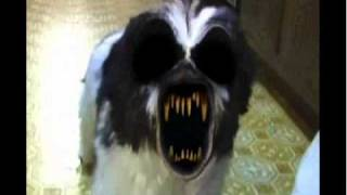 demon dog has a sparta 8-bit uber remix