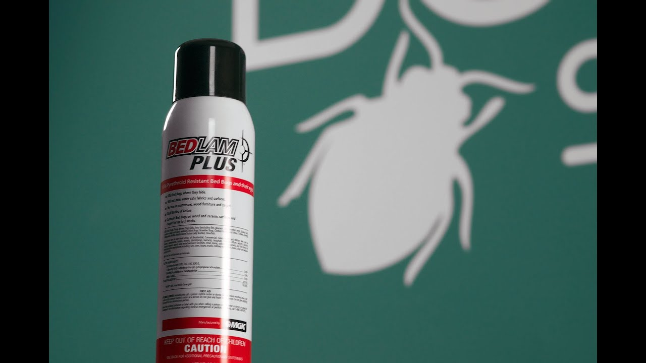 Bedlam Plus Bed Bug Spray Review Youtube