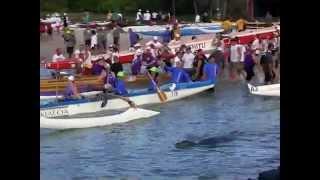 Hawaiian Monk Seal Visits Queen Liliuokalani Outrigger Canoe Race 2012
