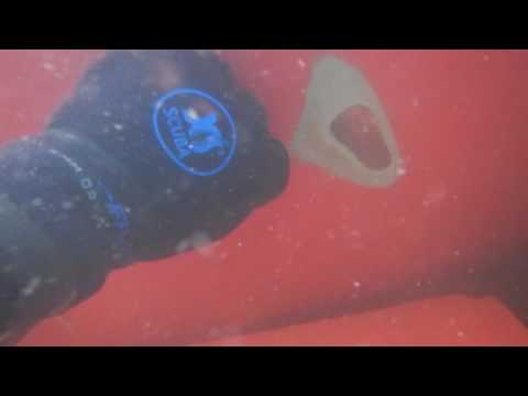 Diver Hull Inspection