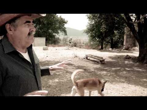 """Documental Ex hacienda de """"La Torre"""" Amealco, Querétaro, México."""