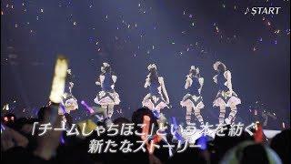 2017年10月18日リリース、初のベストアルバム「しゃちBEST 2012-2017」5...