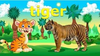 Dạy bé học các con vật bằng Tiếng Anh   hình ảnh và tiếng kêu con hổ báo   Dạy tiếng anh cho trẻ em