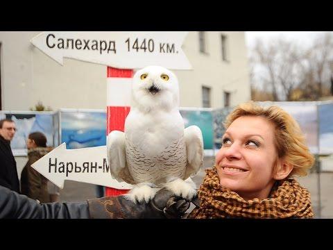 """Торжественное открытие мультимедиа выставки """"Арктика"""""""