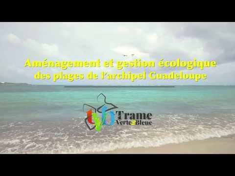 TEASER Aménagement et Gestion écologique des plages de Guadeloupe CAUE 2018