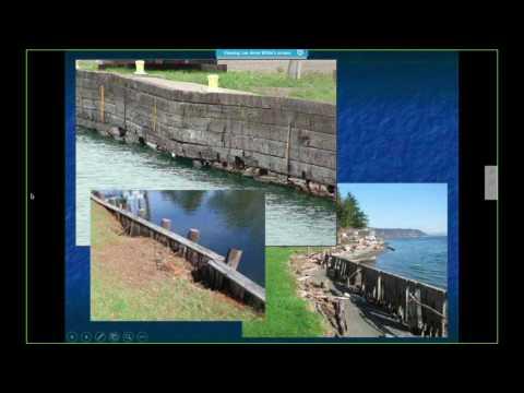Living Shorelines as Adaptable Erosion Control