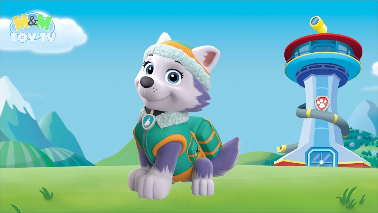 acdc004fc Coloring - Paw Patrol - Everest - Female Husky & Snowy Mountain Pup/Puppy/ Dog