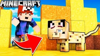 PYSIA KOTEK KAMUFLAŻ TROLL?! - ZABAWA W CHOWANEGO W MINECRAFT (Hide and Seek) | Vito vs Bella